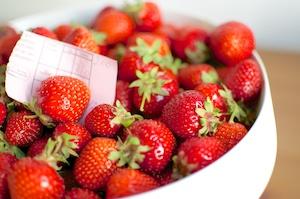 Selbstgepflückte Erdbeeren